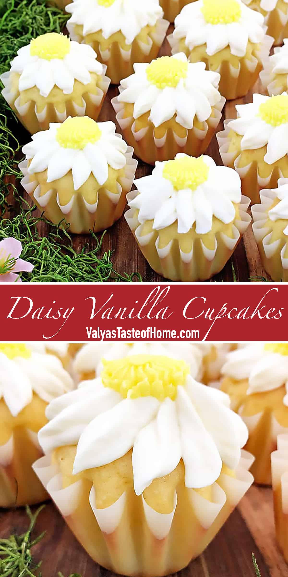Daisy Vanilla Cupcakes