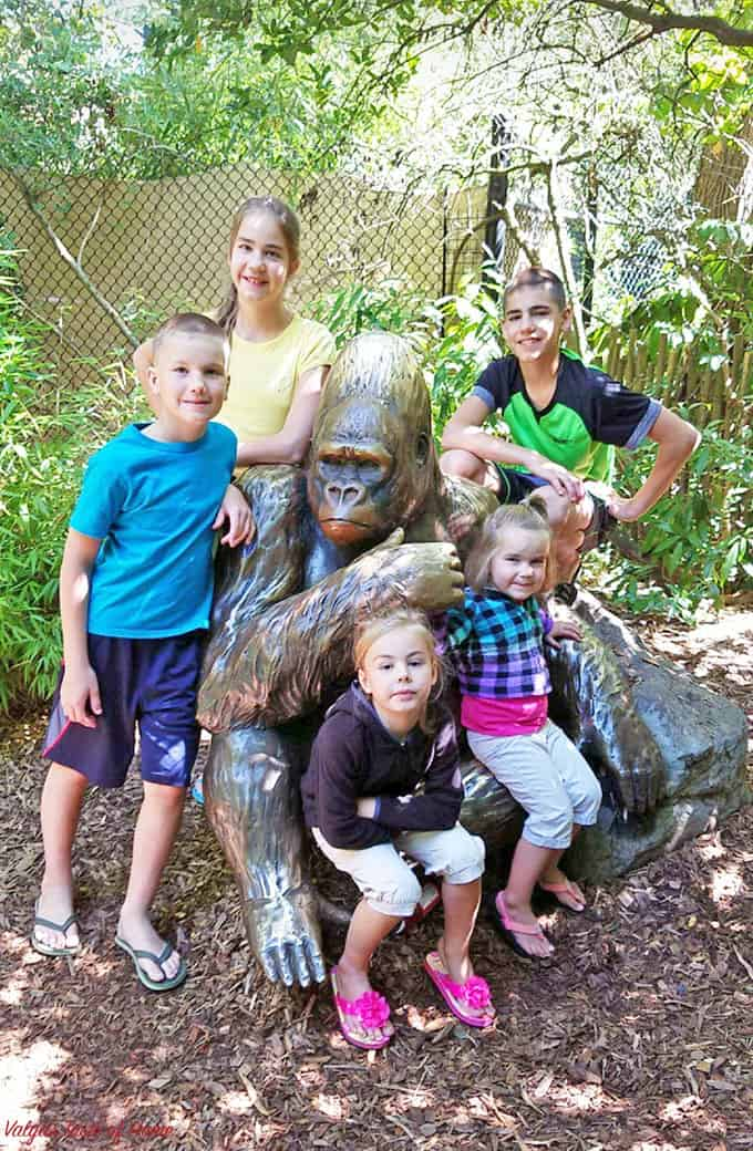 Affordable Daily Summer Activates for Kids, bike riding, camping, enjoyed by my kids, Entertaining Trips, fun activities with kids, hiking, kids, organization, planning, summer, summer break, summer projects for the kids, summer with kids, swimming, tips, trampoline jumping