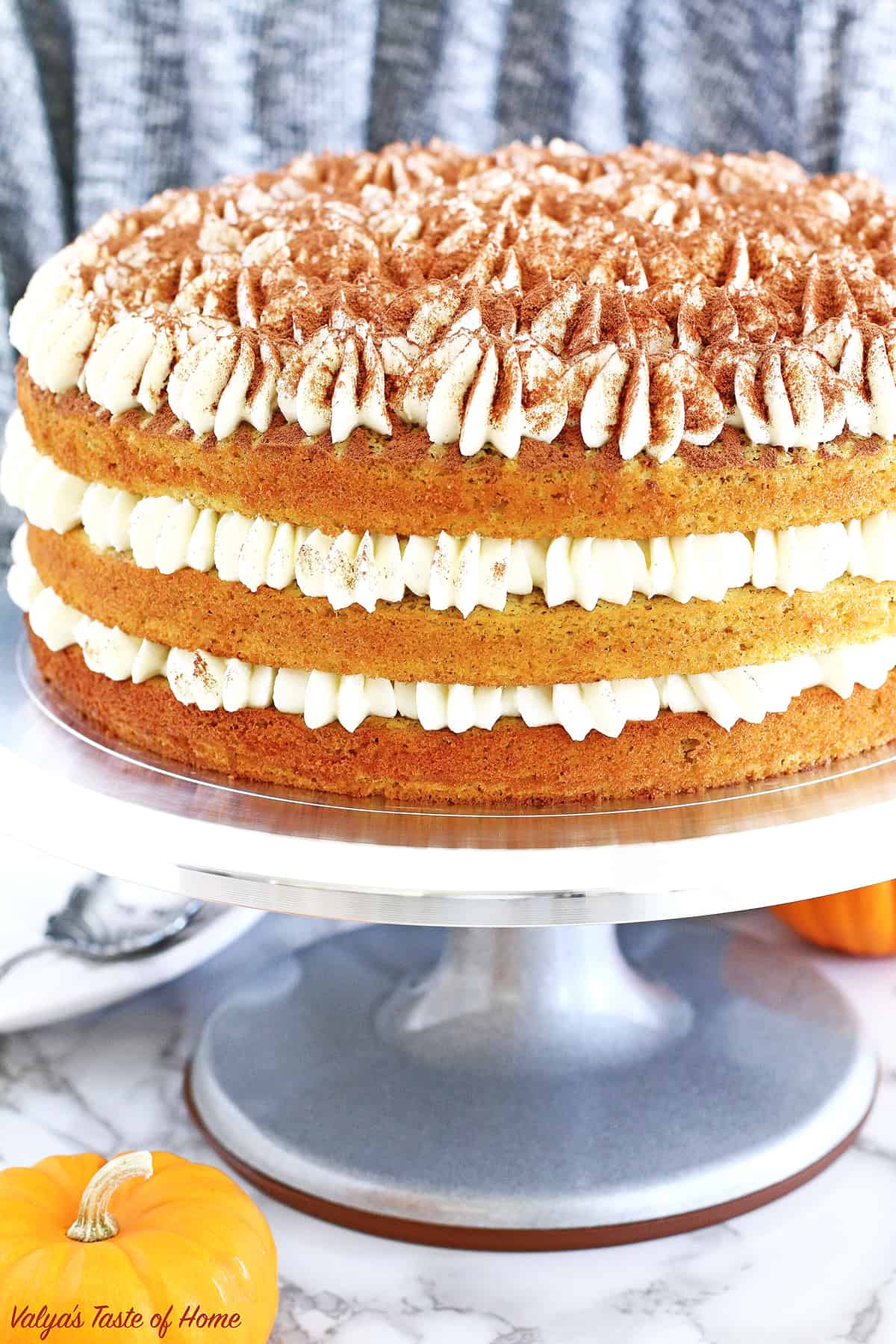 This Pumpkin Tiramisu Cake Recipe is the perfect segue into the colorful Fall and all its delicious flavors season, just as much as S'mores Tiramisu Cake into the summer! It is not overly sweet but is very fluffy, moist, and delicious.