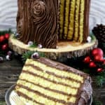The Best Tree Stump Cake dessert, with its irresistible chocolate buttercream frosting and the beauty of a true show stopper. It's perfect for Christmas, any holiday, or a woodland theme party.